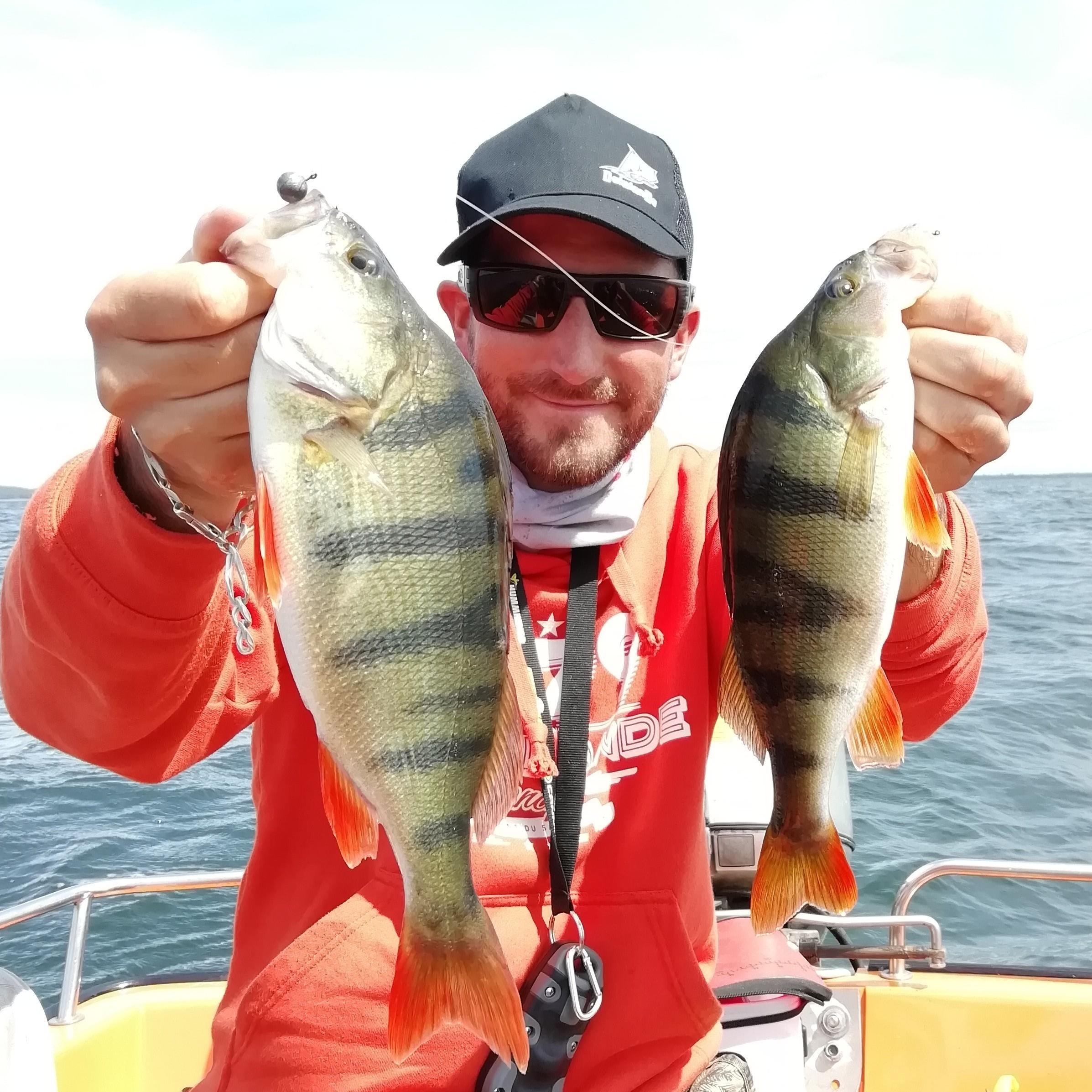 Pêcher les perches en été: doublez vos chances