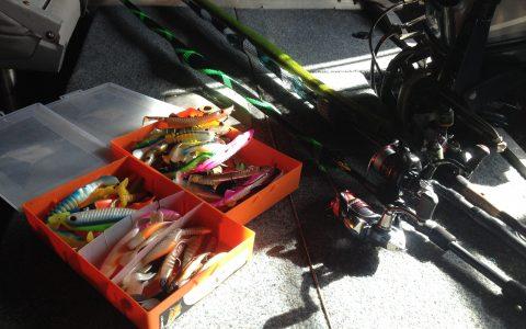 Ouverture de la pêche aux carnassiers 2020 : l'attente fut longue !