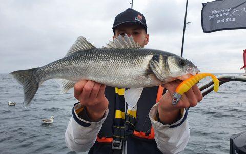 Pêche sur les épaves Normandes par Hugo