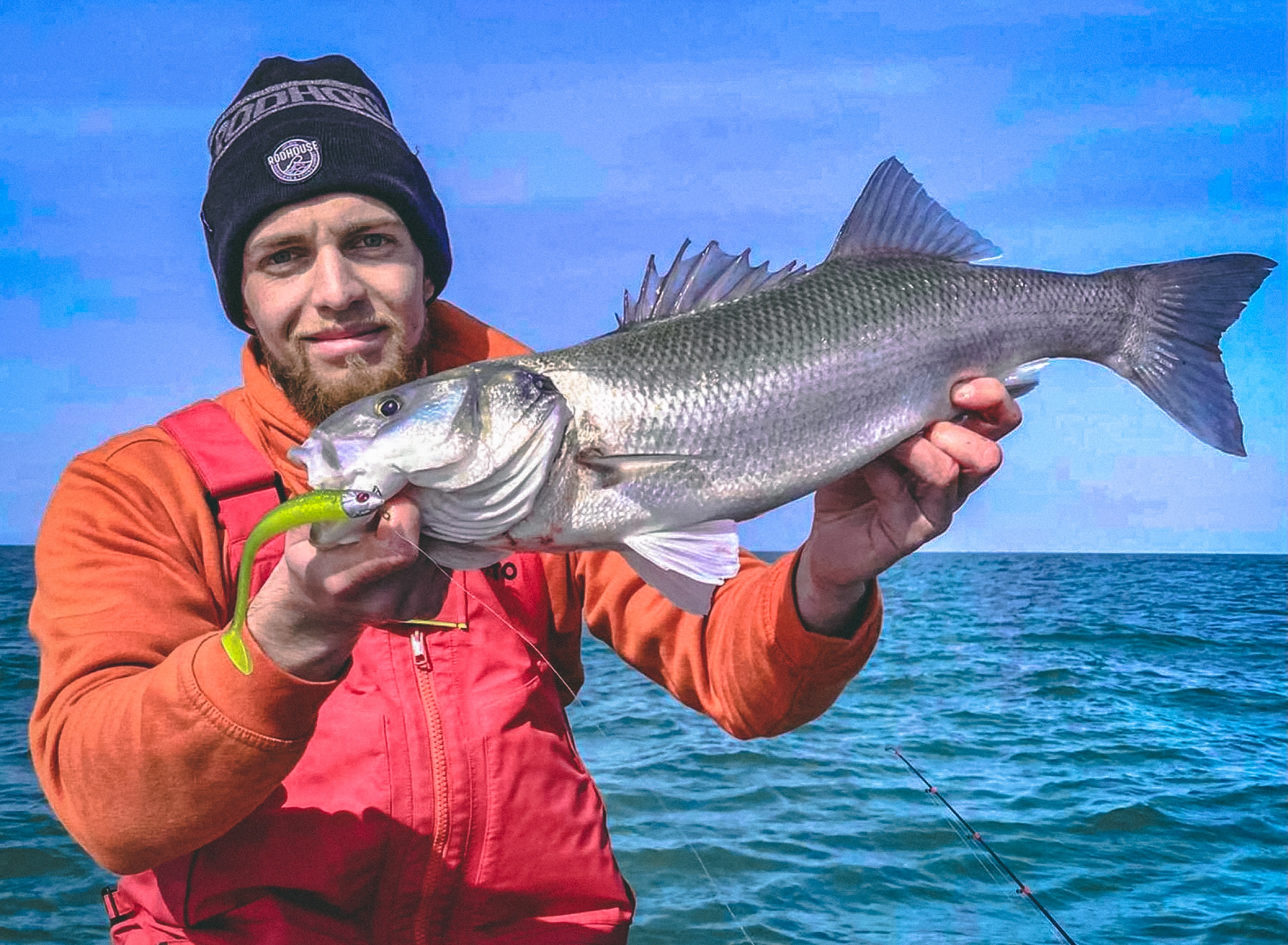 Seabass fishing : good start to the season in Normandy